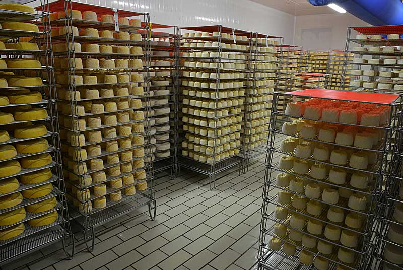 Fromagerie Germain - Fromage de Langres